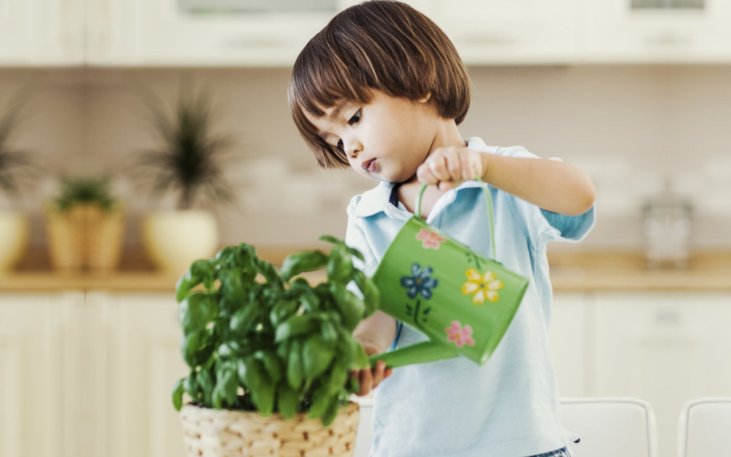 Cute little boy watering a plant in his house